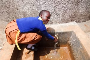 The Water Project: Shihalia Primary School -  Finished Tank