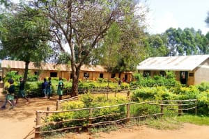 The Water Project: Majengo Primary School -  School Grounds