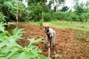 The Water Project: Musango Community, Ndalusia Spring -  Woman Working On Her Farm