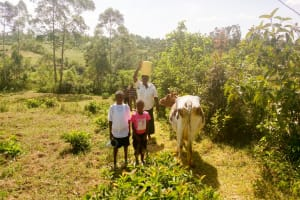 The Water Project: Mukoko Community, Mshimuli Spring -  Carrying Water Home