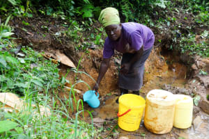 The Water Project: Ilala Community, Arnold Johnny Spring -  Rose Mukolwe