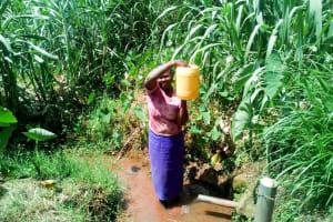 The Water Project: Mukangu Community, Lihungu Spring -  Carrying Water