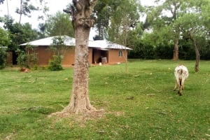 The Water Project: Musango Community, Ndalusia Spring -  Household