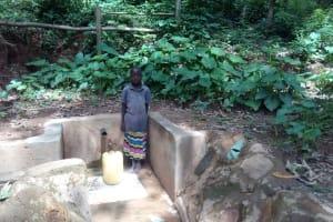 The Water Project: Elunyu Community, Saina Spring -  Maximila Nekesa