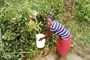 The Water Project: Musango Community, Emufutu Spring -  Fetching Water