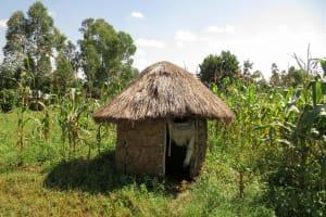 The Water Project: Bukhaywa Community, Asumani Spring -  Latrine At Farm