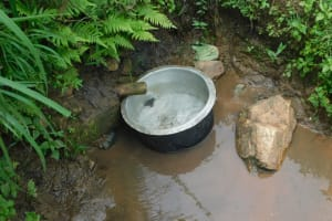 The Water Project: Eshiakhulo Community, Kweyu Spring -  Current Water Source
