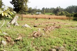 The Water Project: Musango Community, Mushikhulu Spring -  Community Landscape