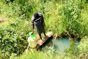The Water Project: Mukhuyu Community, Kwawanzala Spring -  Fetching Water