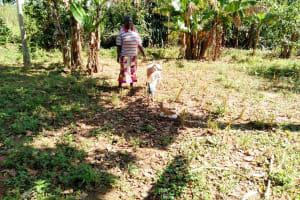 The Water Project: Sambuli Community, Nechesa Spring -  Community