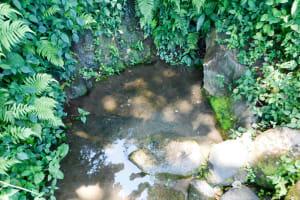 The Water Project: Munenga Community, Burudi Spring -  Current Water Source