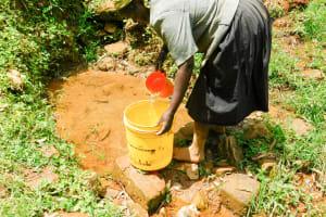 The Water Project: Wajumba Community, Wajumba Spring -  Nelly Fetching Water