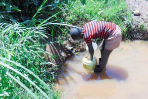 The Water Project: Ibinzo Community, Lucia Spring -  Fetching Water