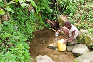 The Water Project: Munenga Community, Burudi Spring -  Fetching Water