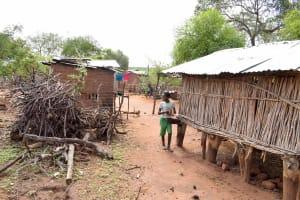 The Water Project: Kathamba Ngii Community -  Maluki Household