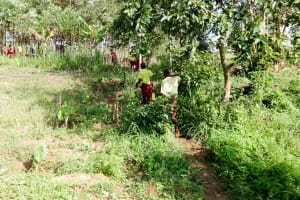 The Water Project: Shibinga Primary School -  Footpath To The Spring
