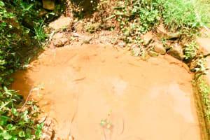 The Water Project: Wajumba Community, Wajumba Spring -  Current Water Source
