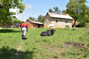 The Water Project: Mbau Community B -  Walking To The Mulwa Household