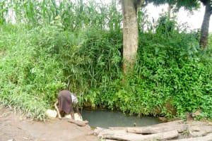 The Water Project: Karagalya Kawanga Community -  Alinega Fetching Water From Open Source