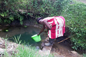 The Water Project: Malava Community, Ndevera Spring -  Miriam Fetching Water
