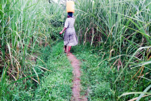 The Water Project: Bukhakunga Community, Ngovilo Spring -  Carrying Water