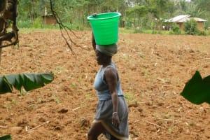 The Water Project: Eshiakhulo Community, Kweyu Spring -  Dorcas Kweyu