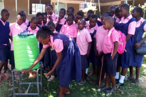 The Water Project: Friends Kaimosi Demonstration Primary School -  Students Use Handwashing Station