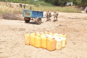 The Water Project: Maviaume Primary School -  Water Conatiners Preparing To Be Loaded Up To Fill