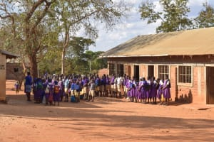 The Water Project: Kwa Kyelu Primary School -  Students Gathered Outside