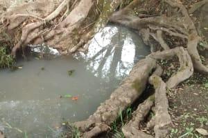 The Water Project: Kinuma Kyarugude Community -  Old Open Water Source