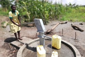 The Water Project: Alimugonza Community A -  Pumping The Well