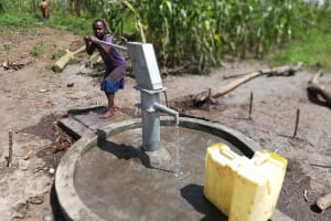The Water Project: Alimugonza Community A -  Reliable Water
