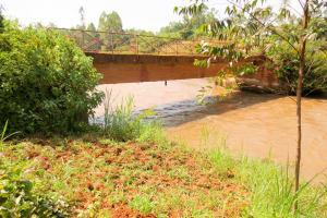 The Water Project: Mutao Community, Kenya Spring -  Bridge Into Community