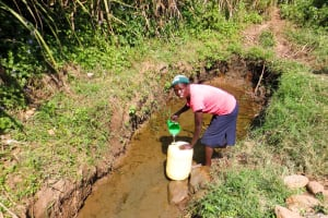 The Water Project: Shisere Community, Francis Atema Spring -  Fetching Water
