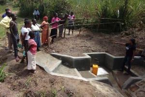 The Water Project: Shirugu Community, Shapaya Mavonga Spring -  Spring Care Training
