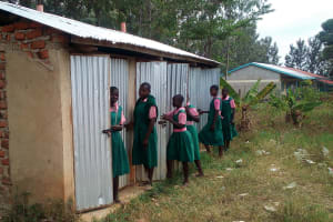 The Water Project: Mukhweya Primary School -  Latrines