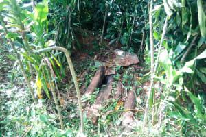 The Water Project: Mutao Community, Shimenga Spring -  Latrine Sample