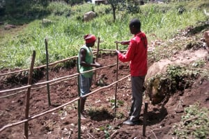 The Water Project: Samisbei Community, Isaac Rutoh Spring -  Spring Fencing