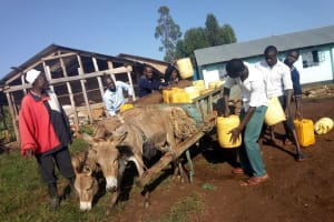 The Water Project: Immaculate Heart Secondary School -  Hired Donkey Cart