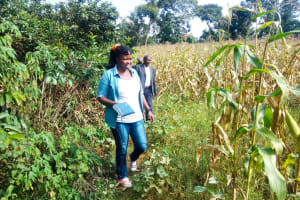 The Water Project: Mutao Community, Shimenga Spring -  Field Officer Jacky Going To The Spring