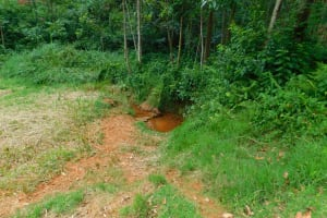 The Water Project: Mukhunya Community, Mwore Spring -  Current Water Source