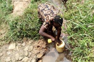 The Water Project: Burachu B Community, Namukhuvichi Spring -  Fetching Water
