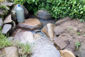 The Water Project: Imbinga Community, Arunga Spring -  Water Source