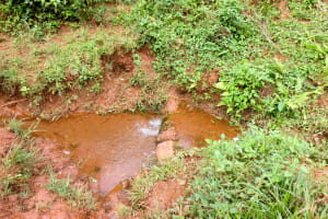 The Water Project: Mutao Community, Shimenga Spring -  Current Water Source