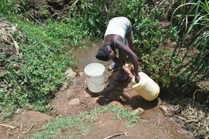 The Water Project: Ataku Community, Ngache Spring -  Fetching Water