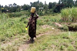 The Water Project: Burachu B Community, Namukhuvichi Spring -  Carrying Water