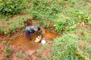 The Water Project: Mutao Community, Shimenga Spring -  Fetching Water