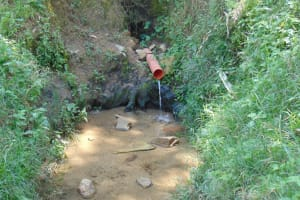 The Water Project: Emukangu Community, Okhaso Spring -  Current Water Source