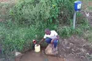 The Water Project: Shihungu Community, Shihungu Spring -  Fetching Water