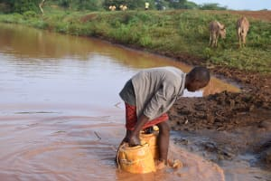 The Water Project: Kathuli Community A -  Collecting Water From The River